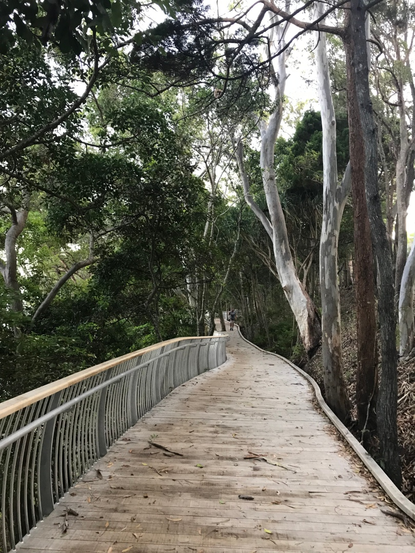 Boardwalk Noosa National Park running walking trail view Queensland Australia trees beach ocean